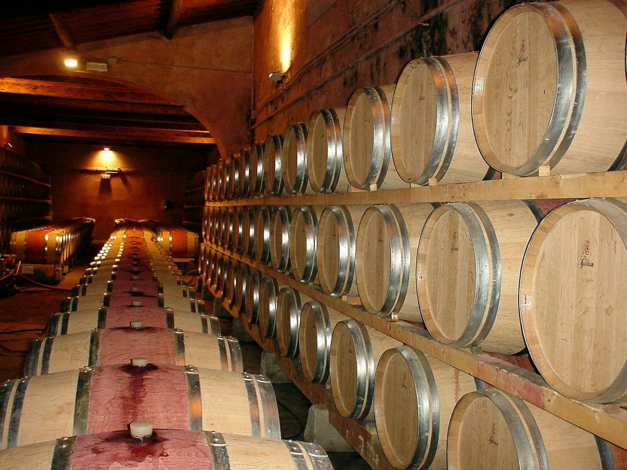 Choisir sa cave à vin